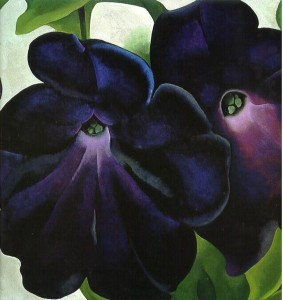 Black and Purple Petunias, Georgia O'Keeffe